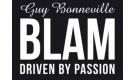 Автомобильные колонки BLAM