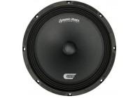 Dynamic State CM-25.1 Custom Series акустика